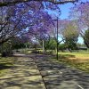 UQ Lake Bus Stop